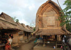 Rambitan - Lombok 2