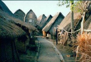 Rambitan - Lombok 1