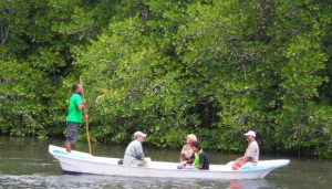 mangove-tour-lembongan